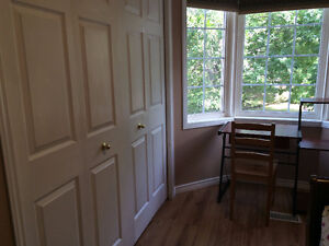 Large bright room for mature student/young professional from Jan Kingston Kingston Area image 5