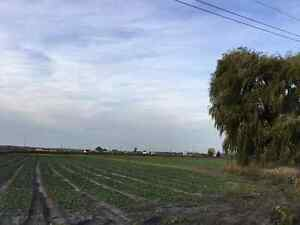 5 Acre Hobby Farm - Vacant Land For Sale