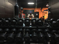 Personal and group training at the private gym