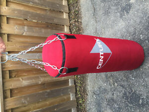 Punching bag and gloves