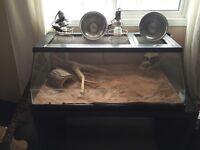 Large terrarium kit for snakes, spiders, lizards or reptiles.