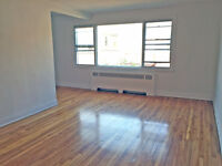 Sunny 2 1/2 apartment. Central location.