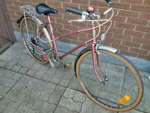 Classic, Cruiser, Ladies Bicycle, Skyline, 5 Speeds