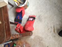 Boxing gloves and mits for sale
