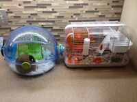Hamster with everything.  Two cages, food, bedding,++