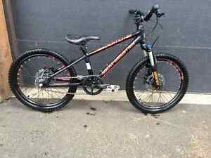 Rocky Mountain Vertex 20 inch only one year