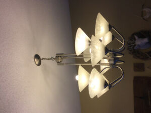 Brushed nickel light