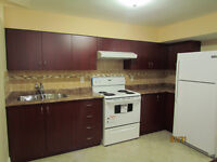 BRAND NEW BEAUTIFUL BASEMENT APARTMENT IN AJAX FOR $1200