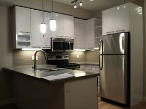 University Garneau Strathcona Whyte Ave 1 bedroom condo for sale