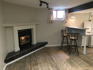 One Bedroom Basement Suite available immediately