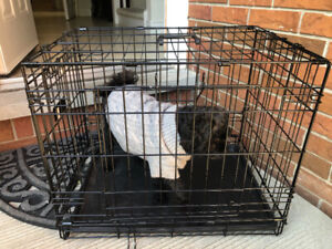 DOG CRATE  & CARRIER FOR SALE excellent condition like new
