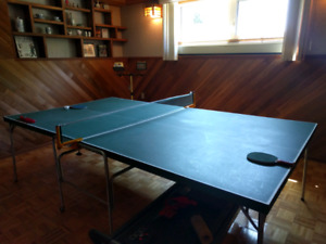 Ping pong table with two paddles