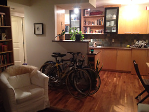 1-bedroom apartment in Mission - available August 1