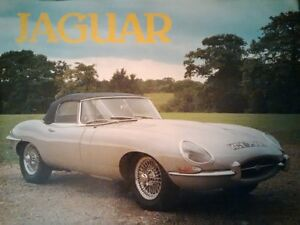 Jaguar (color photos with informative captions) Kitchener / Waterloo Kitchener Area image 1