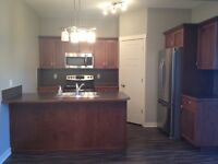 New Basement Suite For Rent In High River