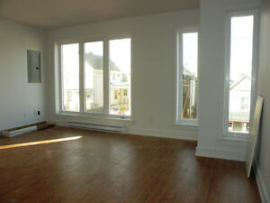 Brand new - downtown apartment