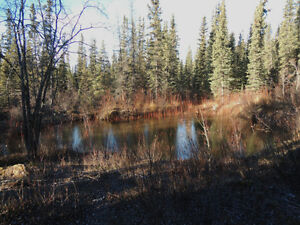 5 Acre Rural Residential Lot for Sale