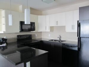 Spacious 3 Bedroom Corner Apartment at the top of Larry Uteck