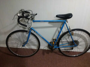Raleigh, Record, Racing Bike, 10 Speed, LARGE 25 inch frame