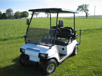 2010 Club Car DS 48V - Golf Cart
