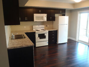 Beautiful one bedroom at University and Ira Needles Kitchener / Waterloo Kitchener Area image 7
