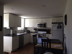2 Bedroom Newly-Renovated Walkout Basement Apt in Oyster Bed