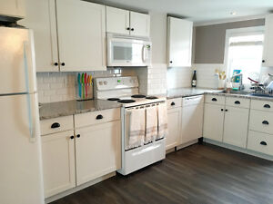 Executive Downtown Newly-Renovated House Avaliable Immediately!