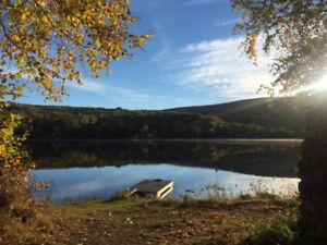 Chalet jaune au Lac Long à louer