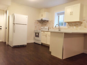2BR basement on Burke Mountain with great view and location