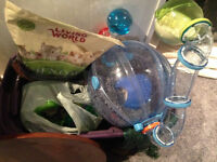 hamster or gerbil food and accessories
