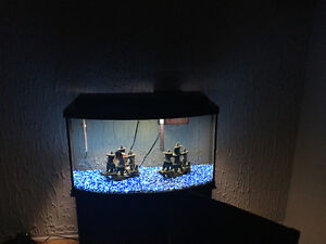 50 Gallon Fish Tank with stand for sale