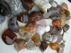 lapidary rock stone fossil and minerals