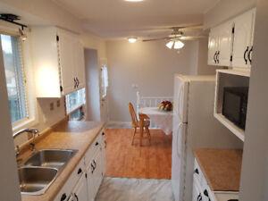 Bright beautiful 1800 sq.ft freshly renovated 3 bedroom N. Galt