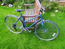 Dawes ladies bike steel 501 frame schwalbe 6-speed