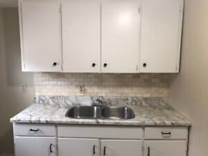 Quiet and Renovated Bachelor in Prime Downtown Hamilton