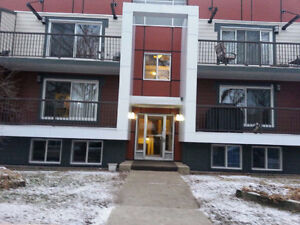 INCREDIBLE 1 BDR two floors next to river valleyJacuzzie