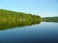 1.4 acres/Terrain à vendre/Land for sale/Lac Major/Ferme-NeuveQC