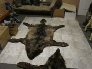 wolf rugs
