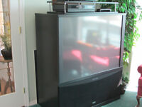Free T.V. RCA would be great for kids games, works fine.