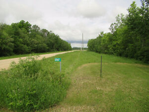 Land for Sale - 125166 Colonization Road N, Hnausa