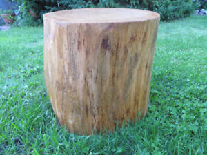 Tree Trunk Side / Accent Table / Stool