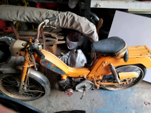 Torrot Scooter.