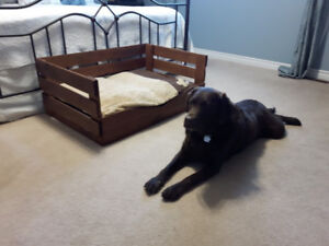 Hand made doggie beds