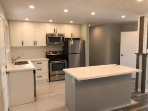 Renovated 3 Bedroom in  whitby for rent