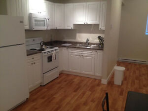 Large 1bedroom basement suite for rent