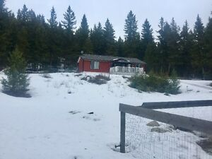 26 Acre Property in Falkland BC at 3885 Maddox Road
