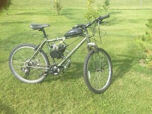 Norco mountain bike  with engine !!!