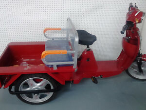 Mobility, tricycles  Remote Jeeps, Lay Aways, Storage Cornwall Ontario image 5