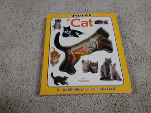 Uncover a cat. Great book