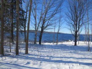 Bark Lake Waterfront Lot!